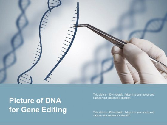 Picture Of DNA For Gene Editing Ppt PowerPoint Presentation Gallery Elements