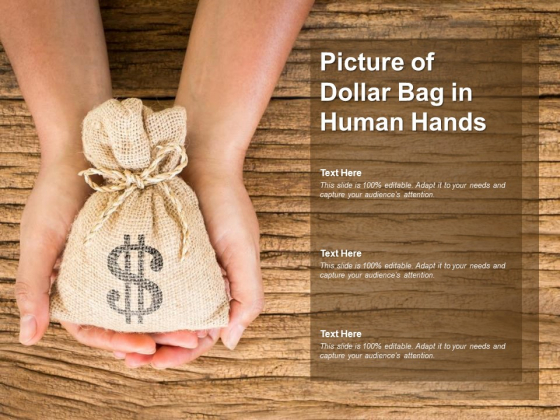Picture Of Dollar Bag In Human Hands Ppt PowerPoint Presentation Ideas Introduction