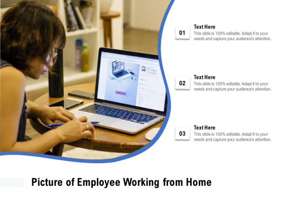 Picture Of Employee Working From Home Ppt PowerPoint Presentation Icon Infographics PDF
