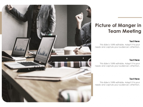 Picture Of Manger In Team Meeting Ppt PowerPoint Presentation File Inspiration PDF
