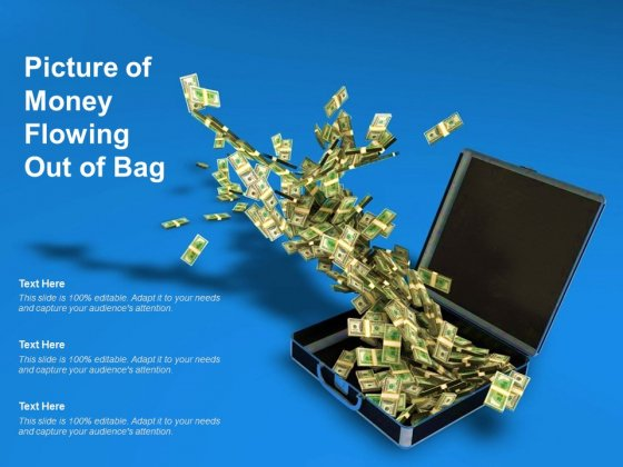 Picture Of Money Flowing Out Of Bag Ppt PowerPoint Presentation Portfolio Visual Aids