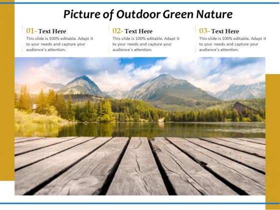 Picture Of Outdoor Green Nature Ppt PowerPoint Presentation Infographics Outline PDF