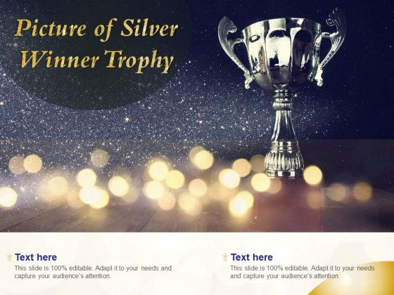 Picture Of Silver Winner Trophy Ppt PowerPoint Presentation Slides Themes