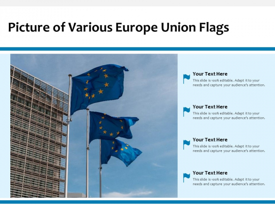 Picture_Of_Various_Europe_Union_Flags_Ppt_PowerPoint_Presentation_Ideas_Outfit_PDF_Slide_1