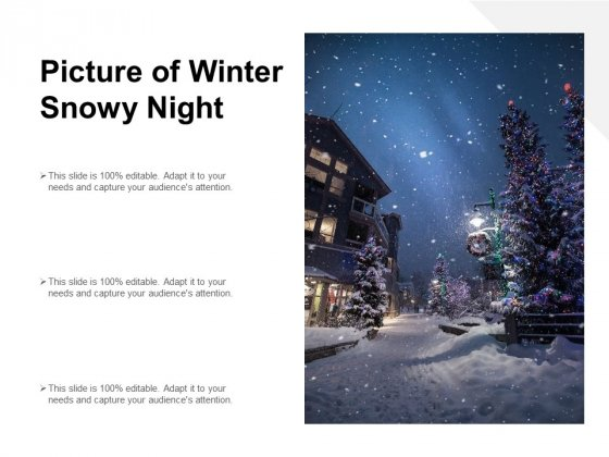 Picture Of Winter Snowy Night Ppt PowerPoint Presentation Icon Ideas