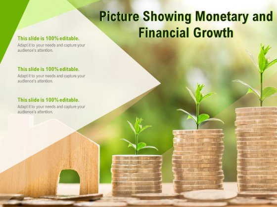 Picture Showing Monetary And Financial Growth Ppt PowerPoint Presentation File Topics