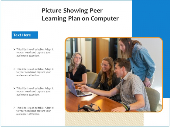 Picture Showing Peer Learning Plan On Computer Ppt PowerPoint Presentation Gallery Layout Ideas PDF