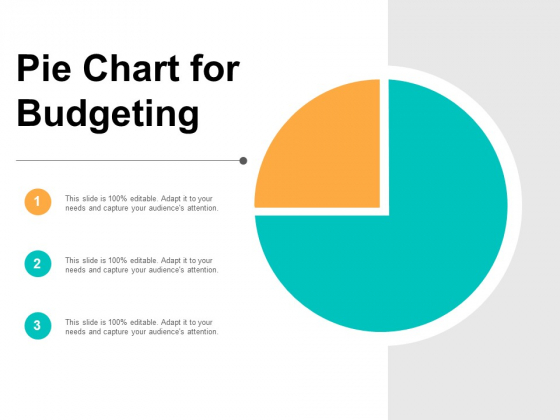 Pie Chart For Budgeting Ppt PowerPoint Presentation Pictures Vector