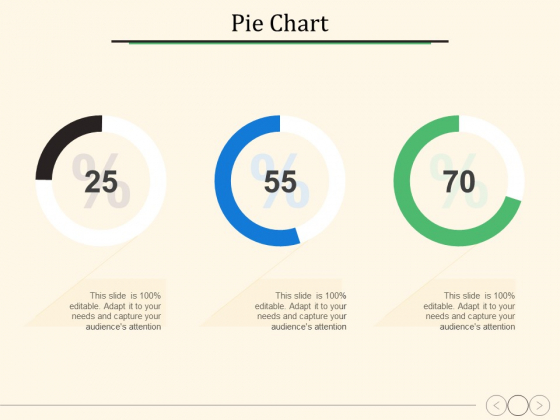 Pie Chart Ppt PowerPoint Presentation Icon Infographic Template