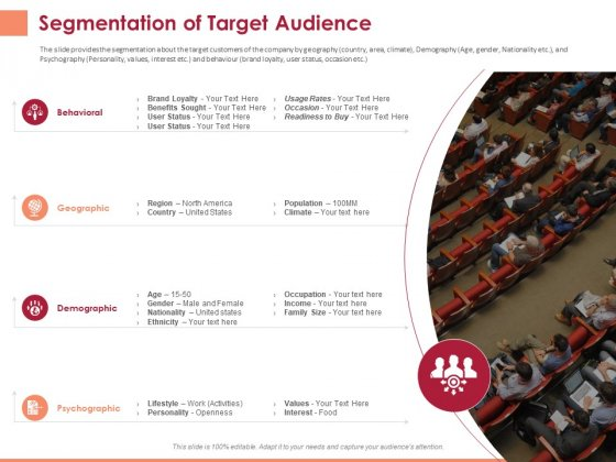 Pitch Deck To Raise Funding From Equity Crowdfunding Segmentation Of Target Audience Ppt Slides Diagrams PDF