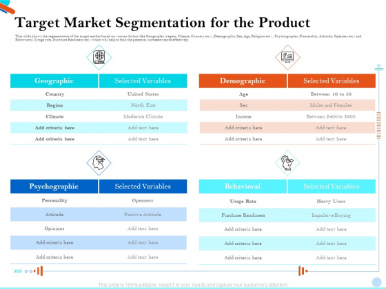 Pitch Presentation Raising Series C Funds Investment Company Target Market Segmentation For The Product Demonstration PDF