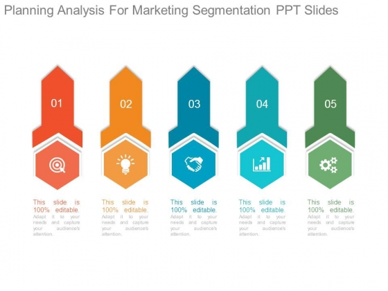 Planning Analysis For Marketing Segmentation Ppt Slides