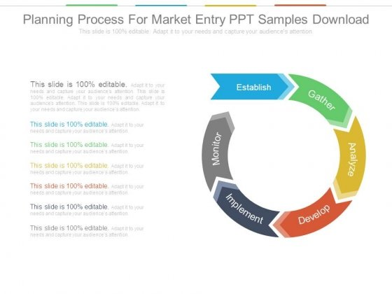 Planning Process For Market Entry Ppt Samples Download