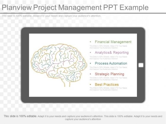 Planview Project Management Ppt Example