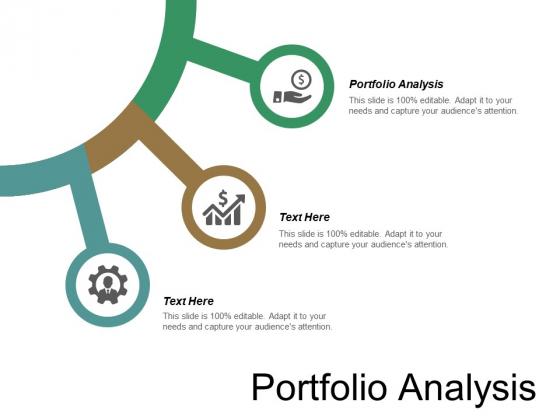 Portfolio Analysis Ppt PowerPoint Presentation Professional Example Cpb