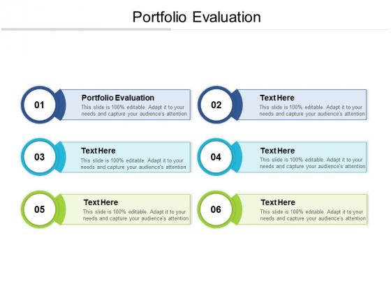 Portfolio Evaluation Ppt PowerPoint Presentation Styles Graphics Cpb