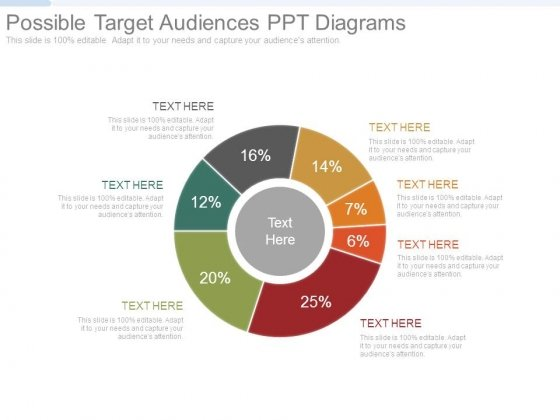 Possible Target Audiences Ppt Diagrams
