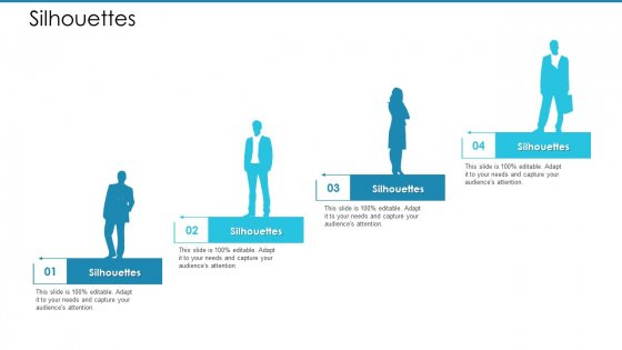 Post Initial Pubic Offering Market Pitch Deck Silhouettes Themes PDF