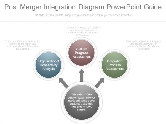Post Merger Integration Diagram Powerpoint Guide