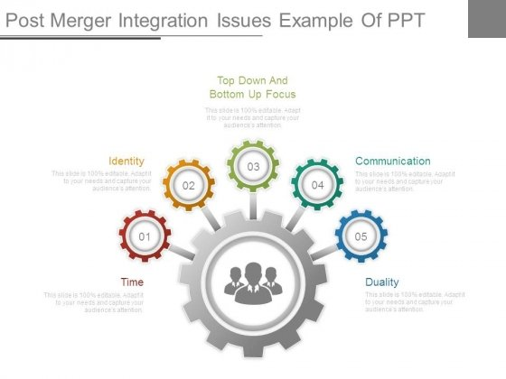 Post Merger Integration Issues Example Of Ppt