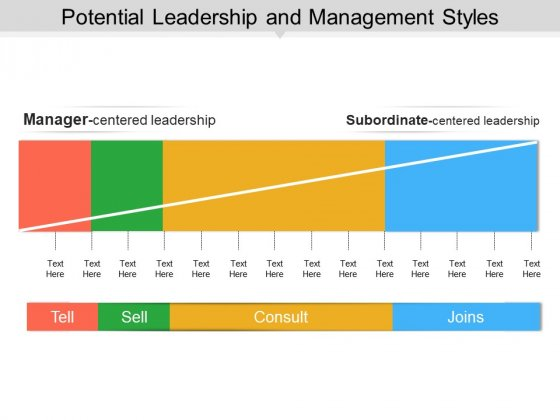Potential Leadership And Management Styles Ppt PowerPoint Presentation File Microsoft