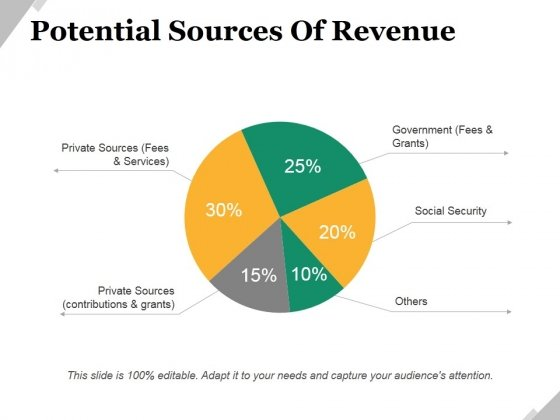 Potential Sources Of Revenue Ppt PowerPoint Presentation Portfolio Designs
