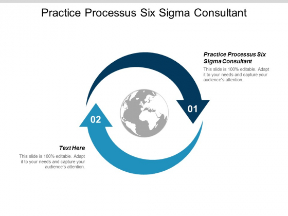 Practice Processes Six Sigma Consultant Ppt Powerpoint Presentation Show Outline Cpb