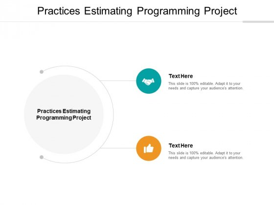 Practices Estimating Programming Project Ppt PowerPoint Presentation Inspiration Example Cpb
