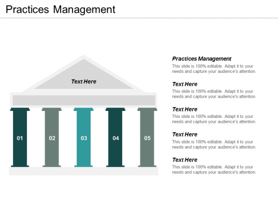 Practices Management Ppt PowerPoint Presentation Infographic Template Icons Cpb