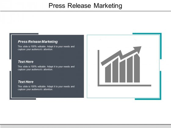 Press Release Marketing Ppt PowerPoint Presentation Outline Pictures Cpb
