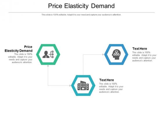 Price Elasticity Demand Ppt PowerPoint Presentation Show Format Ideas Cpb