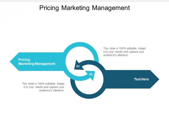 Pricing Marketing Management Ppt PowerPoint Presentation Model Graphics Tutorials Cpb