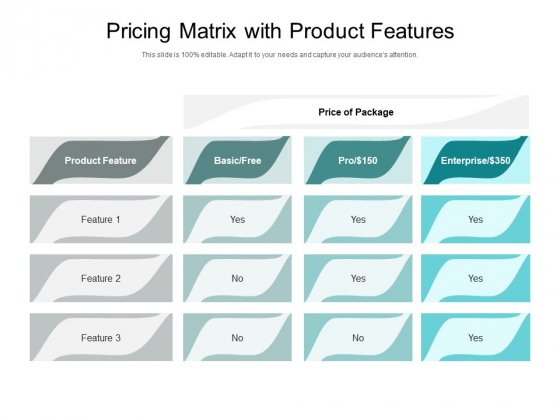 Pricing Matrix With Product Features Ppt PowerPoint Presentation Slides Example File PDF