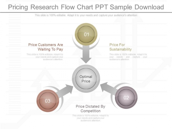 Pricing Research Flow Chart Ppt Sample Download
