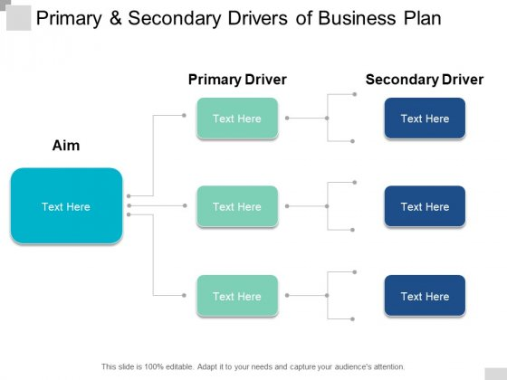 Primary And Secondary Drivers Of Business Plan Ppt PowerPoint Presentation Gallery Backgrounds