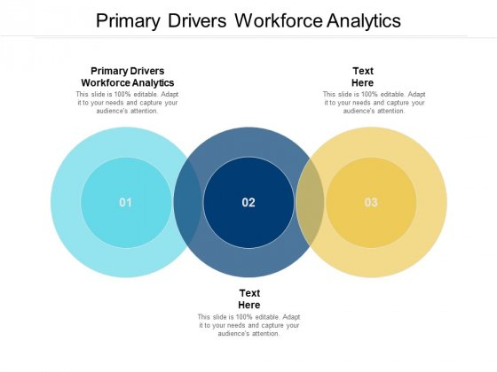 Primary Drivers Workforce Analytics Ppt PowerPoint Presentation Inspiration Gridlines Cpb