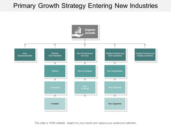 Primary Growth Strategy Entering New Industries Ppt Powerpoint Presentation Summary Example