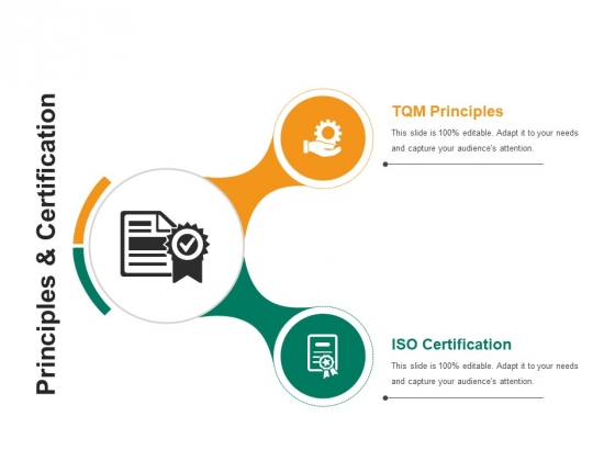 Principles And Certification Ppt PowerPoint Presentation Model Graphics Template