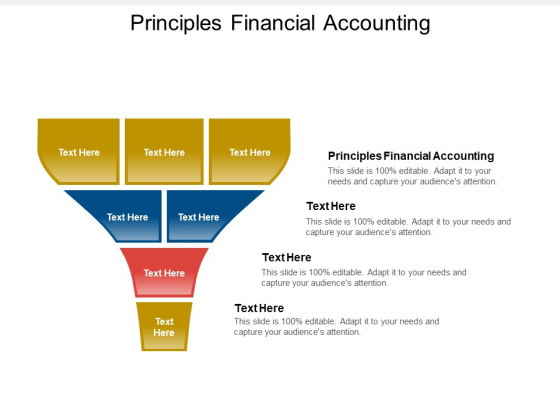 Principles Financial Accounting Ppt PowerPoint Presentation Slides Background Image Cpb Pdf