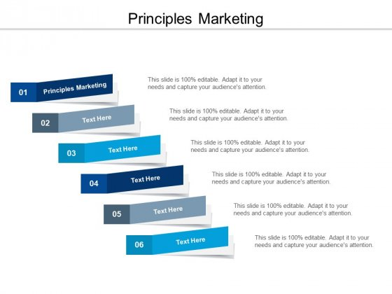Principles Marketing Ppt PowerPoint Presentation Infographics Icons Cpb