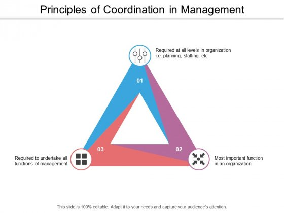 Principles Of Coordination In Management Ppt Powerpoint Presentation Styles Inspiration