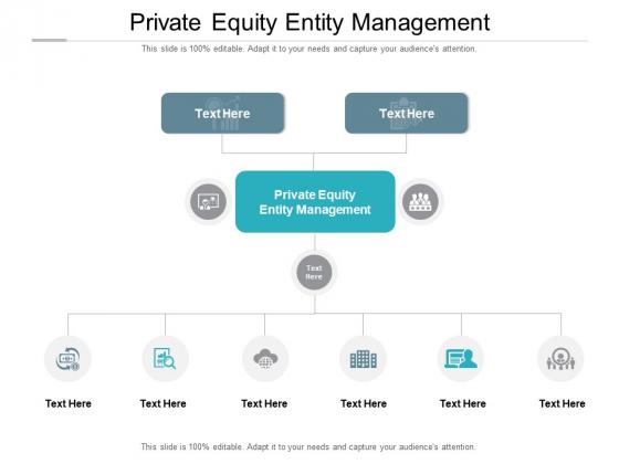Private Equity Entity Management Ppt PowerPoint Presentation Slides Portrait Cpb Pdf