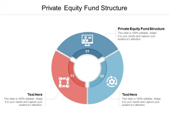 Private Equity Fund Structure Ppt PowerPoint Presentation Ideas Demonstration Cpb