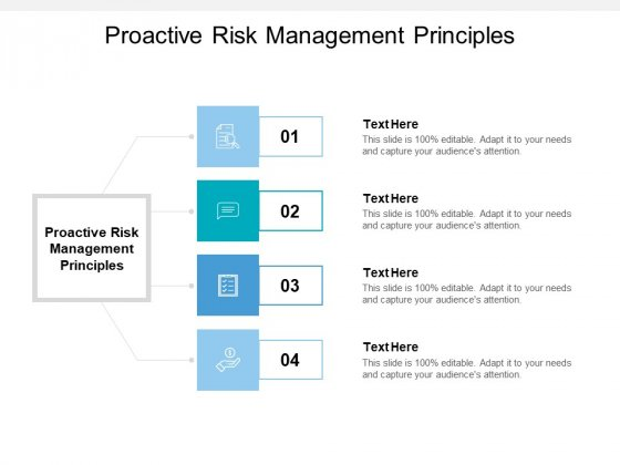 Proactive Risk Management Principles Ppt PowerPoint Presentation Styles Deck Cpb