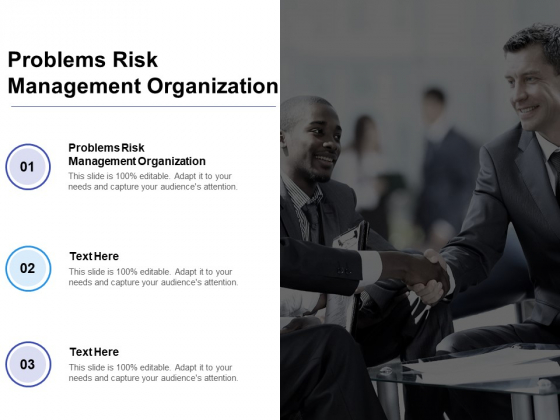 Problems Risk Management Organization Ppt PowerPoint Presentation Infographics Example Cpb