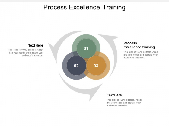 Process Excellence Training Ppt PowerPoint Presentation Ideas Guidelines Cpb