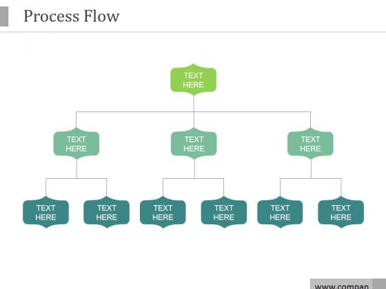 Process Flow Ppt PowerPoint Presentation Portfolio