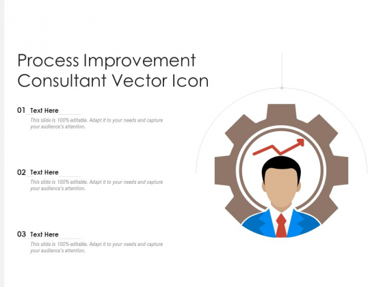 Process Improvement Consultant Vector Icon Ppt PowerPoint Presentation File Demonstration PDF