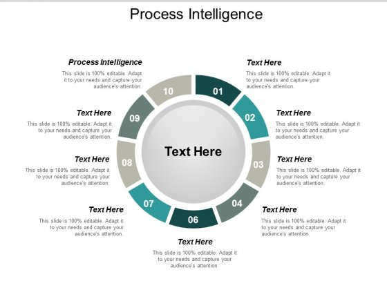 Process Intelligence Ppt PowerPoint Presentation Icon Objects Cpb