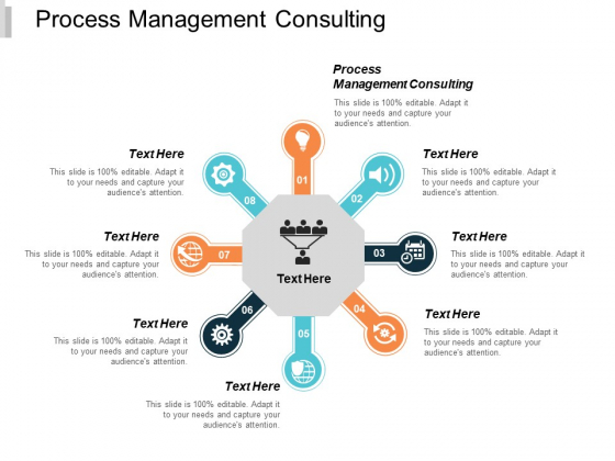 Process Management Consulting Ppt PowerPoint Presentation Portfolio Display Cpb